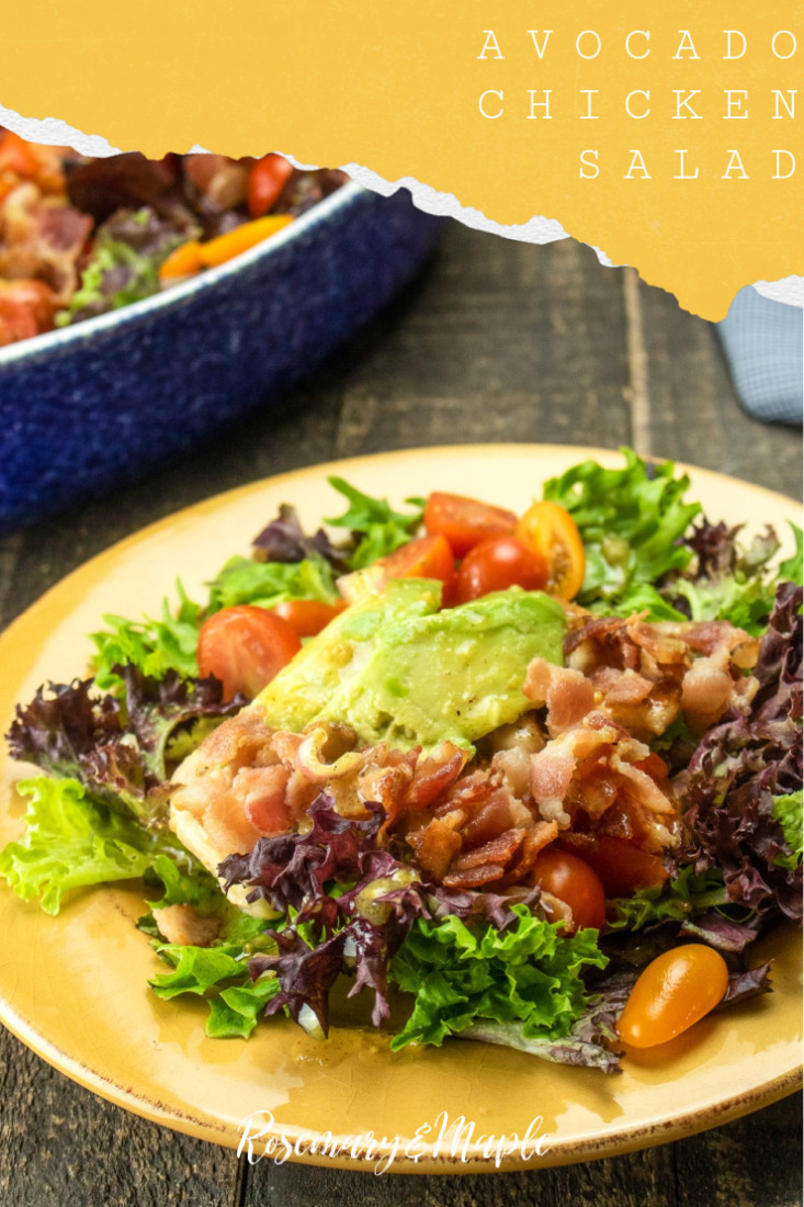 This Avocado chicken salad features fresh vegetables, chicken, bacon, and avocado all smothered in a flavourful homemade vinaigrette.